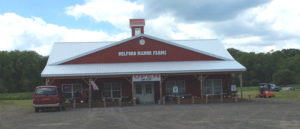 Photo of Milford Manor Farms, a pole-barn building with steel siding & roof